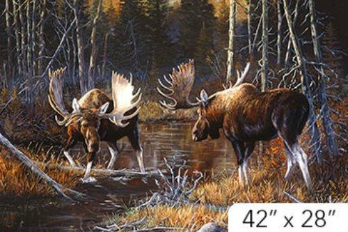 Naturescapes - Majestic Moose - DP21825-36