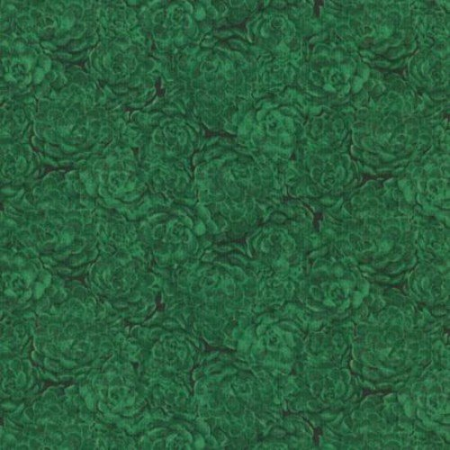 Jinny Beyer Palette - Hens & Chcks Holiday Green - 8737-006