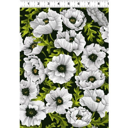 Poppy Poetry - White - Y2658-1