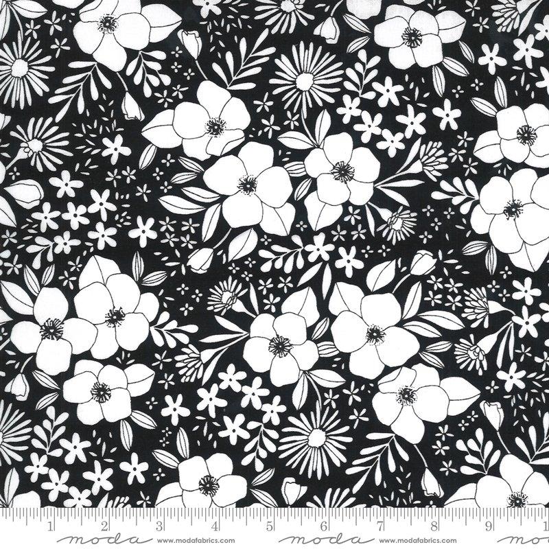 Illustrations Ink Floral on Black