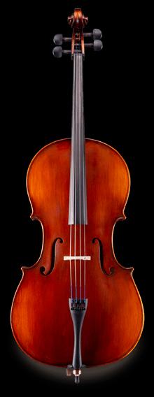 Eastman Antiqued VC95 Cello Outfit
