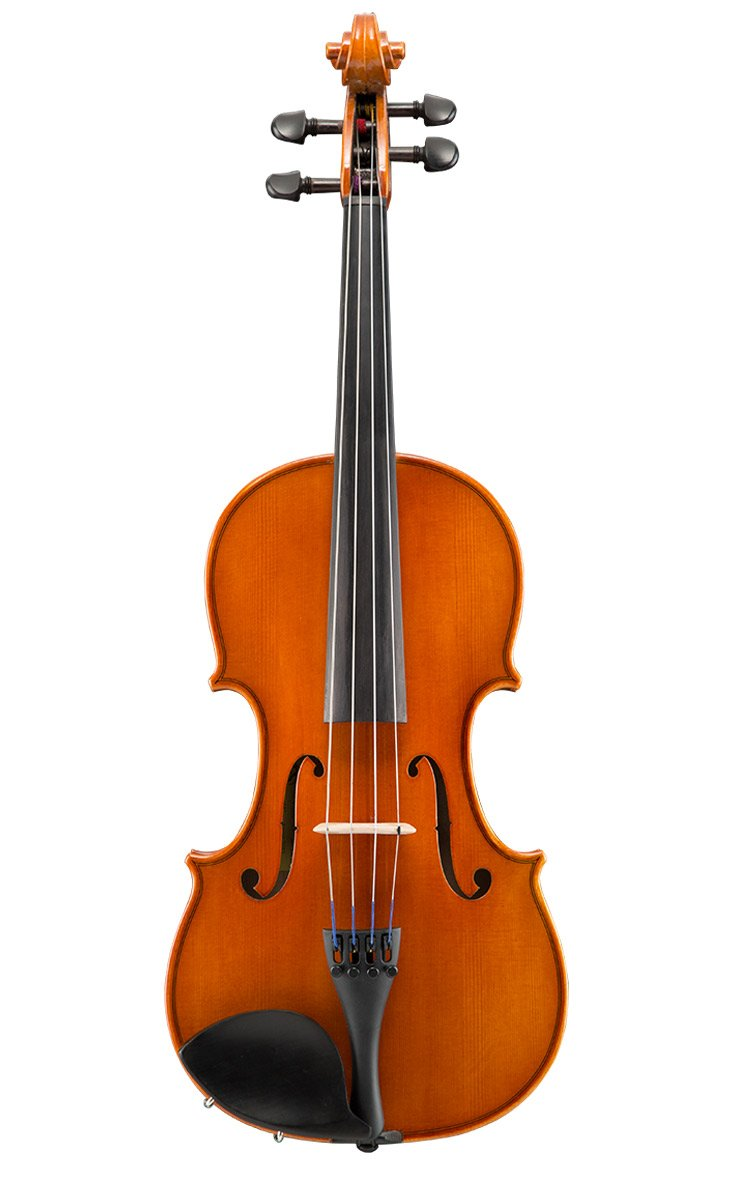 Eastman VL80 Student Violin Outfit