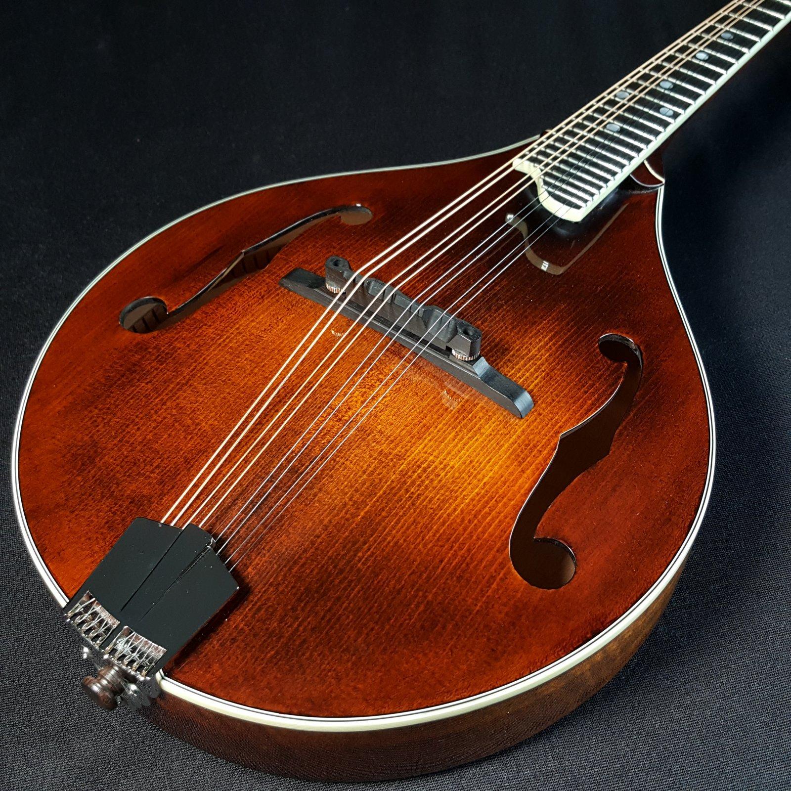 Eastman MD505 Mandolin A Style Classic Finish w/ Case
