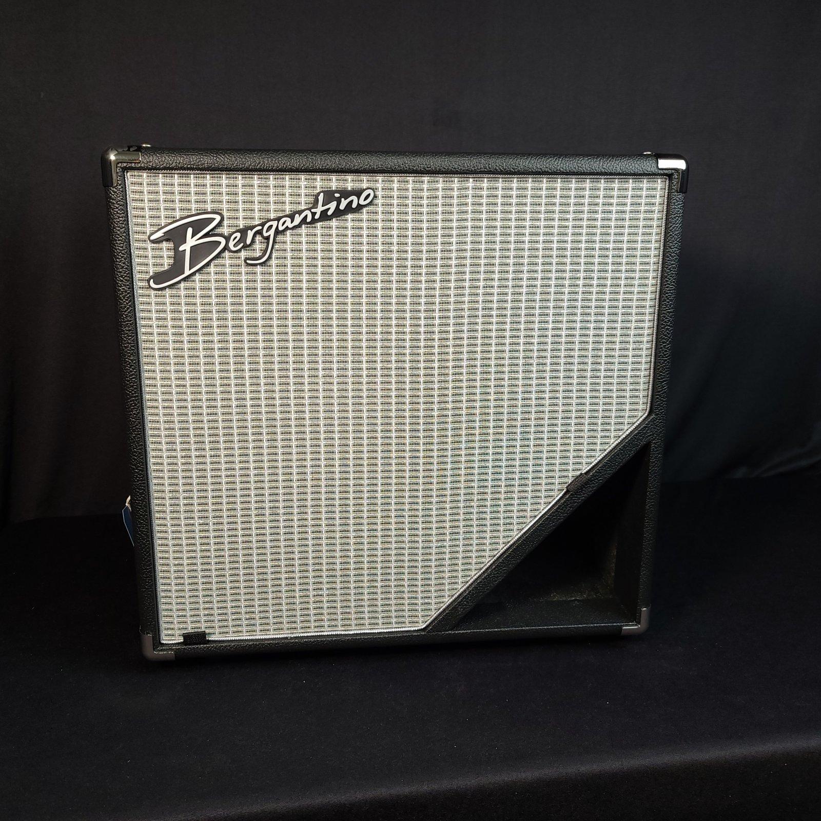 Bergantino NXV112 NXV Series 1-12 Bass Speaker Cabinet