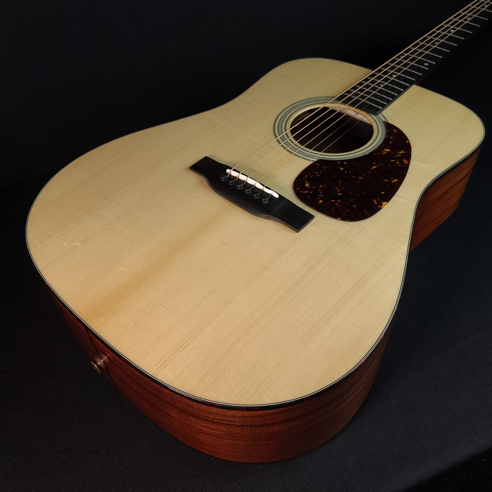 Eastman E6D-TC Thermo Cured Dreadnought Electric Acoustic, Baggs, with Case