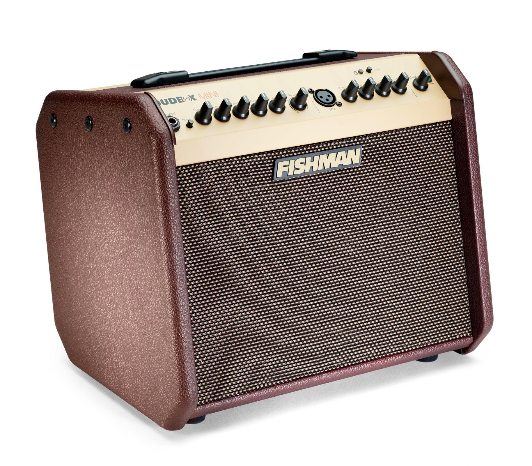 Fishman Loudbox Mini Plus Bluetooth Acoustic Amplifier