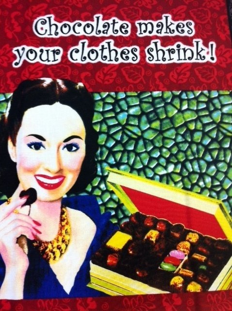Desperate Housewives Retro Sassy Sayings Panel Cotton Fabric Quilt Fabric CR503