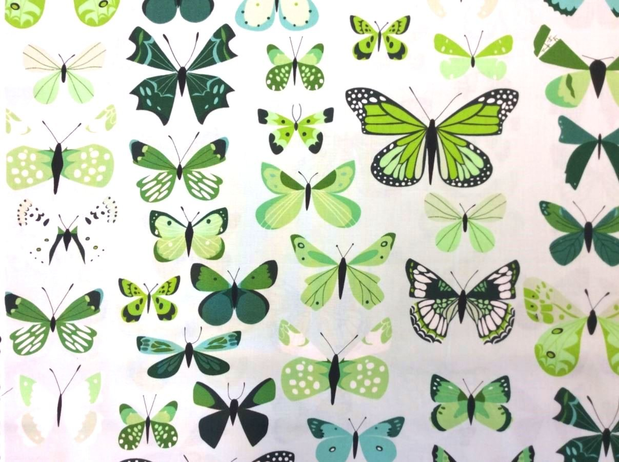 Natural History Butterfly Box Insect Moth Lizzy House Cotton Quilt Fabric AN70