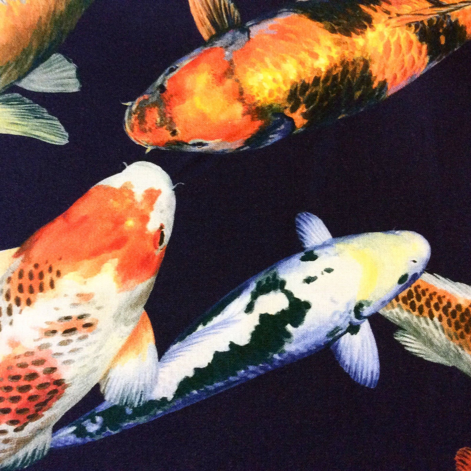 Asian Koi Fish Pond Chinese Japanese Water Wave Sea Kona