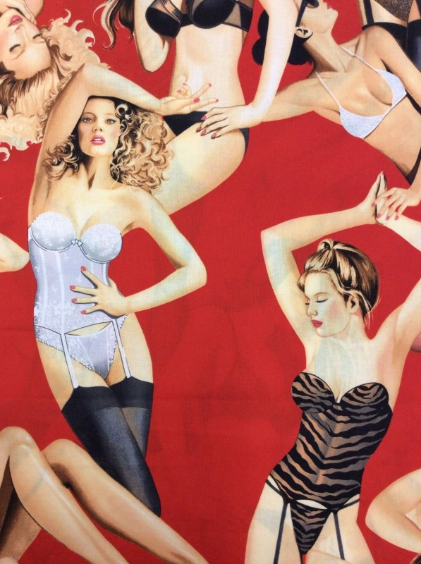 Boudoir Sexy Lingerie Pin-Up Girls On Red Cotton Fabric Quilt Fabric AH92