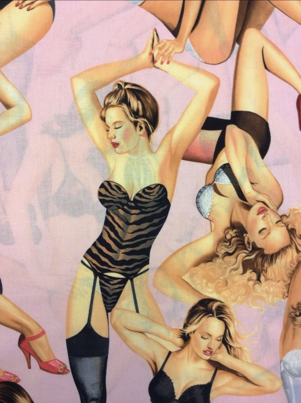 Boudoir Sexy Lingerie Pin-Up Girls On Pink Cotton Fabric Quilt Fabric AH93