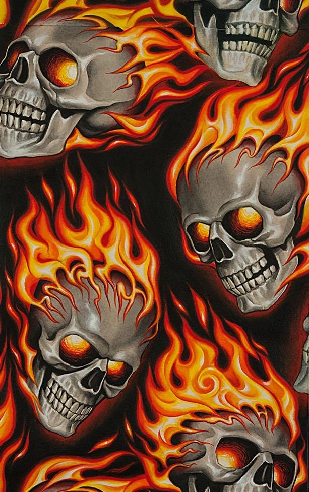 Skull Fire Flames Flaming Skulls Biker Goth Outsider Art Cotton Quilt Fabric AH287