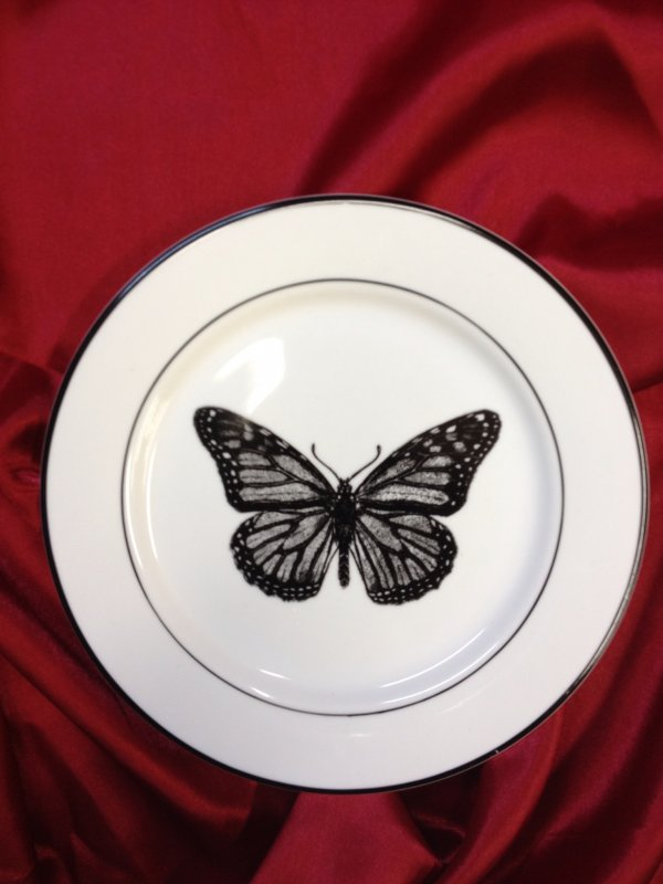 Vintage Style Butterfly Insect Scientific Artwork Print 8 Ceramic Desert Plate