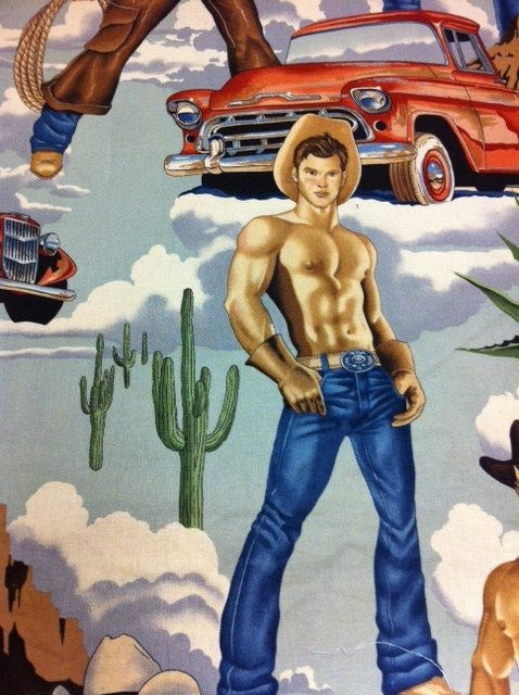 Sexy Pin Up Cowboys Ranch Wrangler Seipa Tone Blue Red Cotton Quilting Fabric CR250
