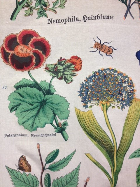 Illustrated Botanical Drapery Fabric Linen Weave Cotton Fabric Upholstery Drapery Fabric DLSO102