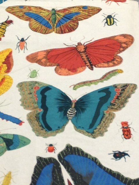 Entymology Vintage Illustration Butterfly Moth Insect Beetle Hand Screen Printed Heavy Weight Linen Fabric Drapery Upholstery DLSO504