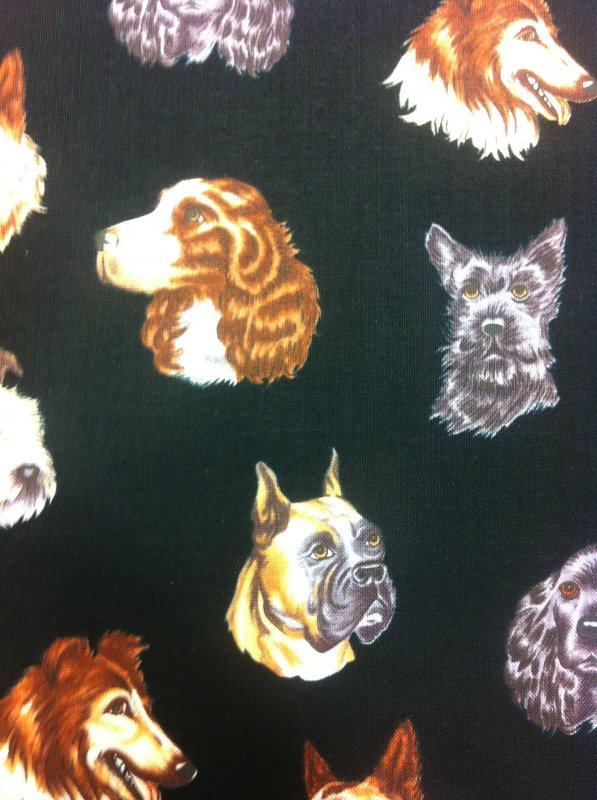 Dogs Boxer collie  German Shepard Scottie terrier  dog heads floating Black Cotton Quilting Fabric C5802