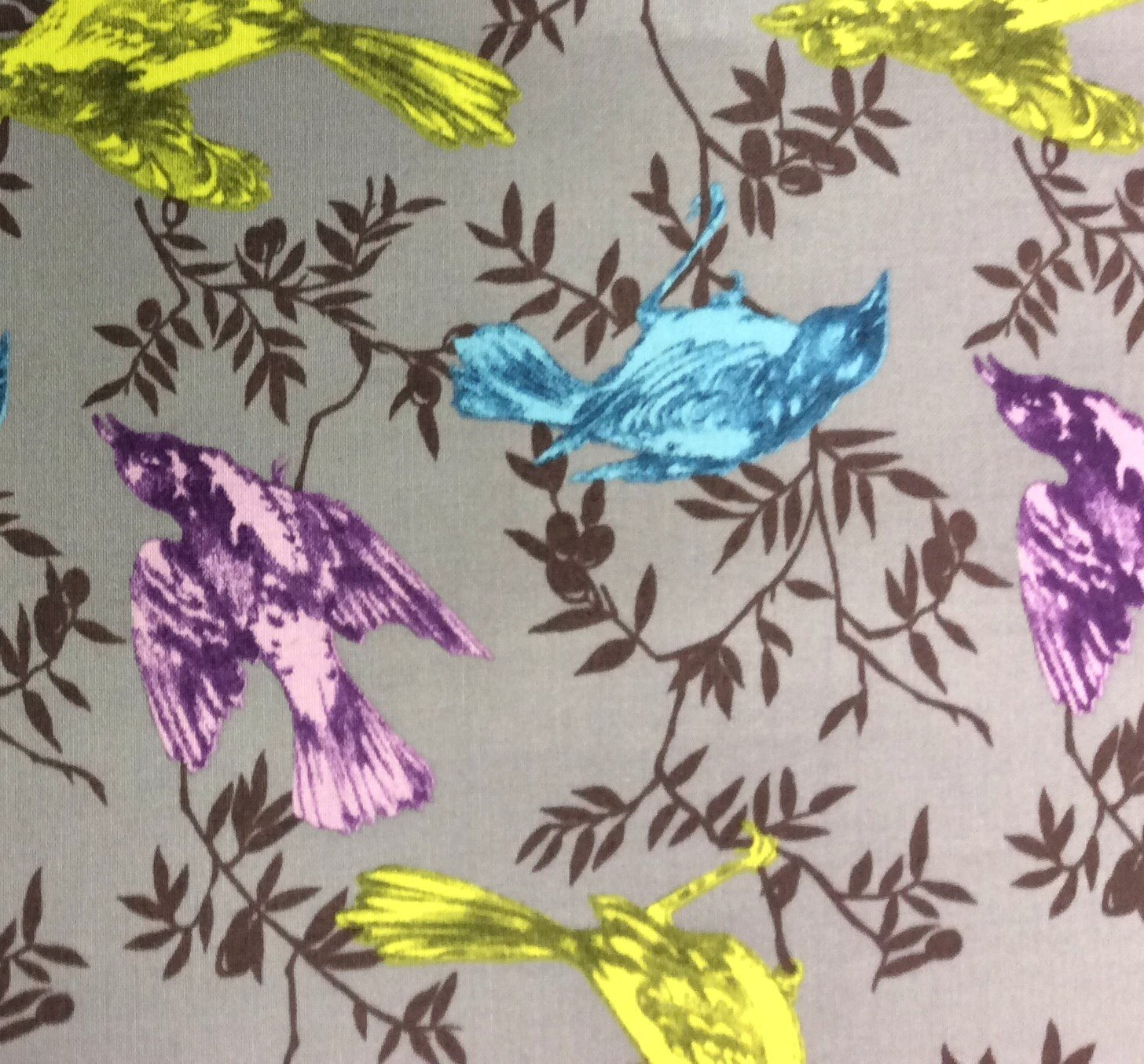 Neon Birds Sparrow Leaves Branches Spring Aviary Cotton Quilting Fabric FT49