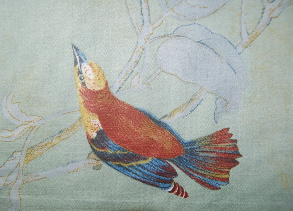 Watercolor Songbirds Beautiful Ilrated Hand Colored Bird Cotton Fabric Drapery Seafoam Hd607e