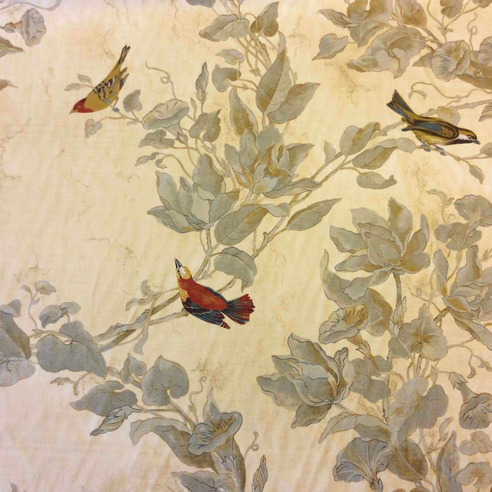 Watercolor Songbirds Beautiful Ilrated Hand Colored Bird Cotton Fabric Drapery Ivory Hd607d