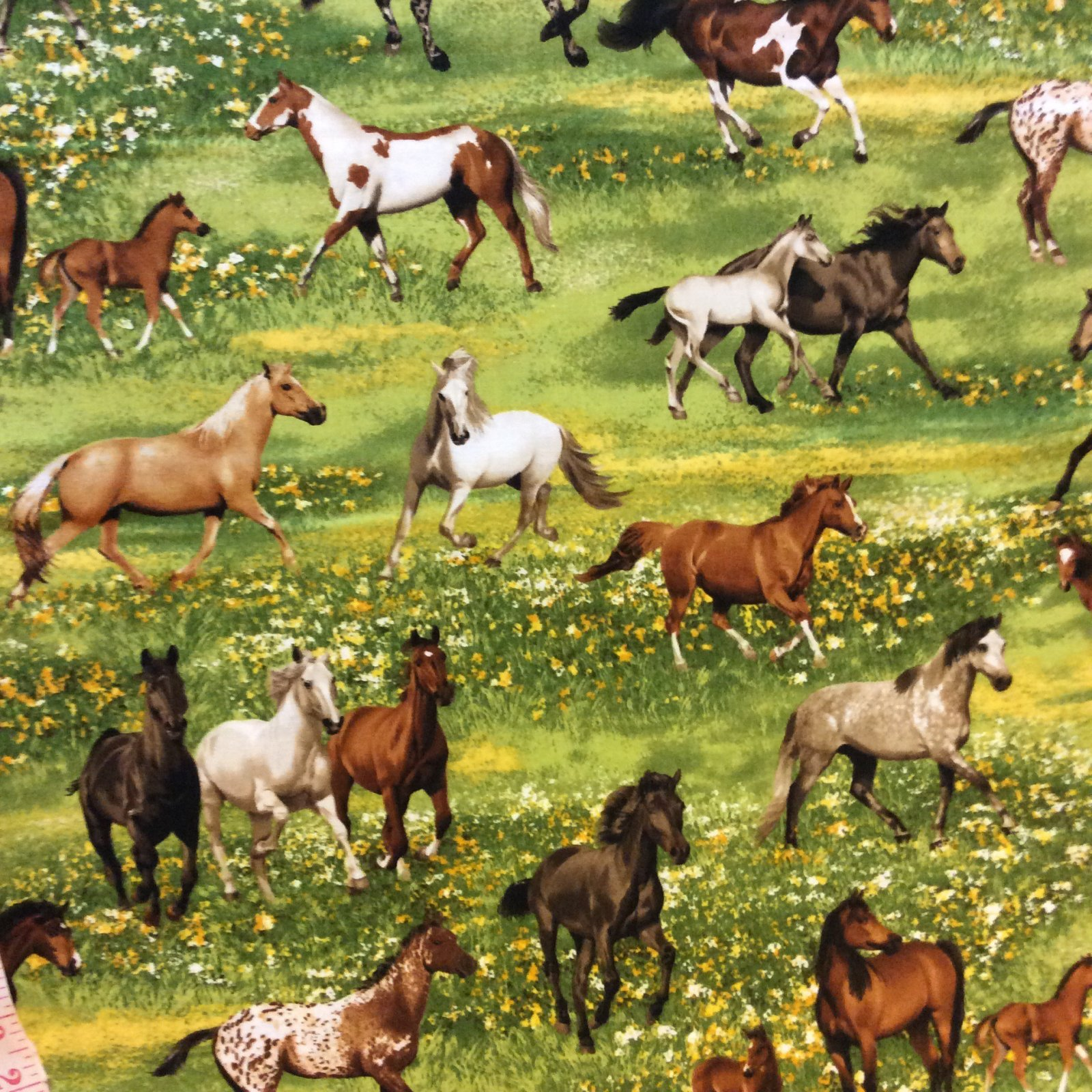 Horses Galloping Equestrian Palomino Morgan Walker Appaloosa Cotton Quilt Fabric MD279