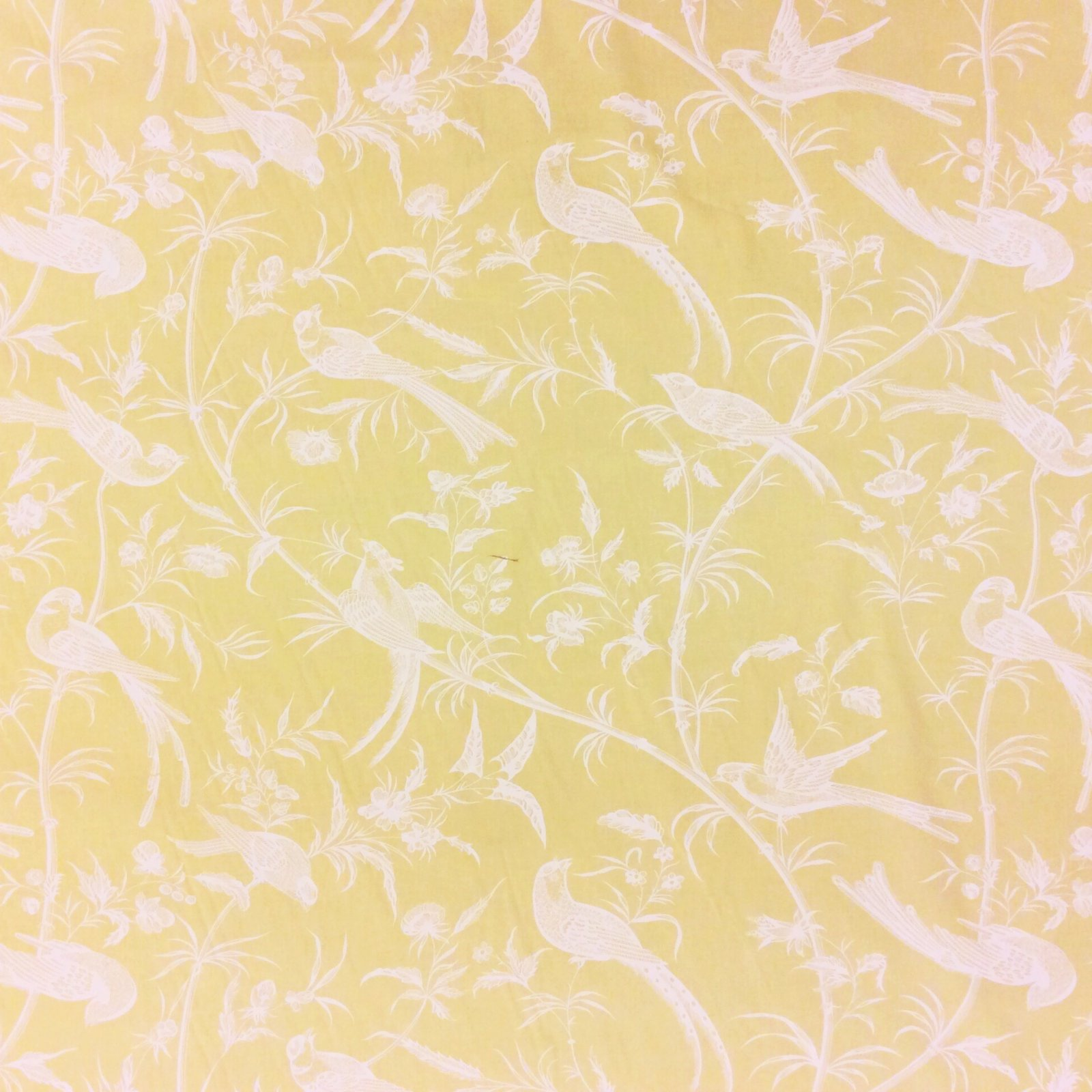 Brunschwig & Fils Hand Print From the Collection of Maison Hamot Paris Birds Perching On Yellow Toile Home Dec Fabric OR113