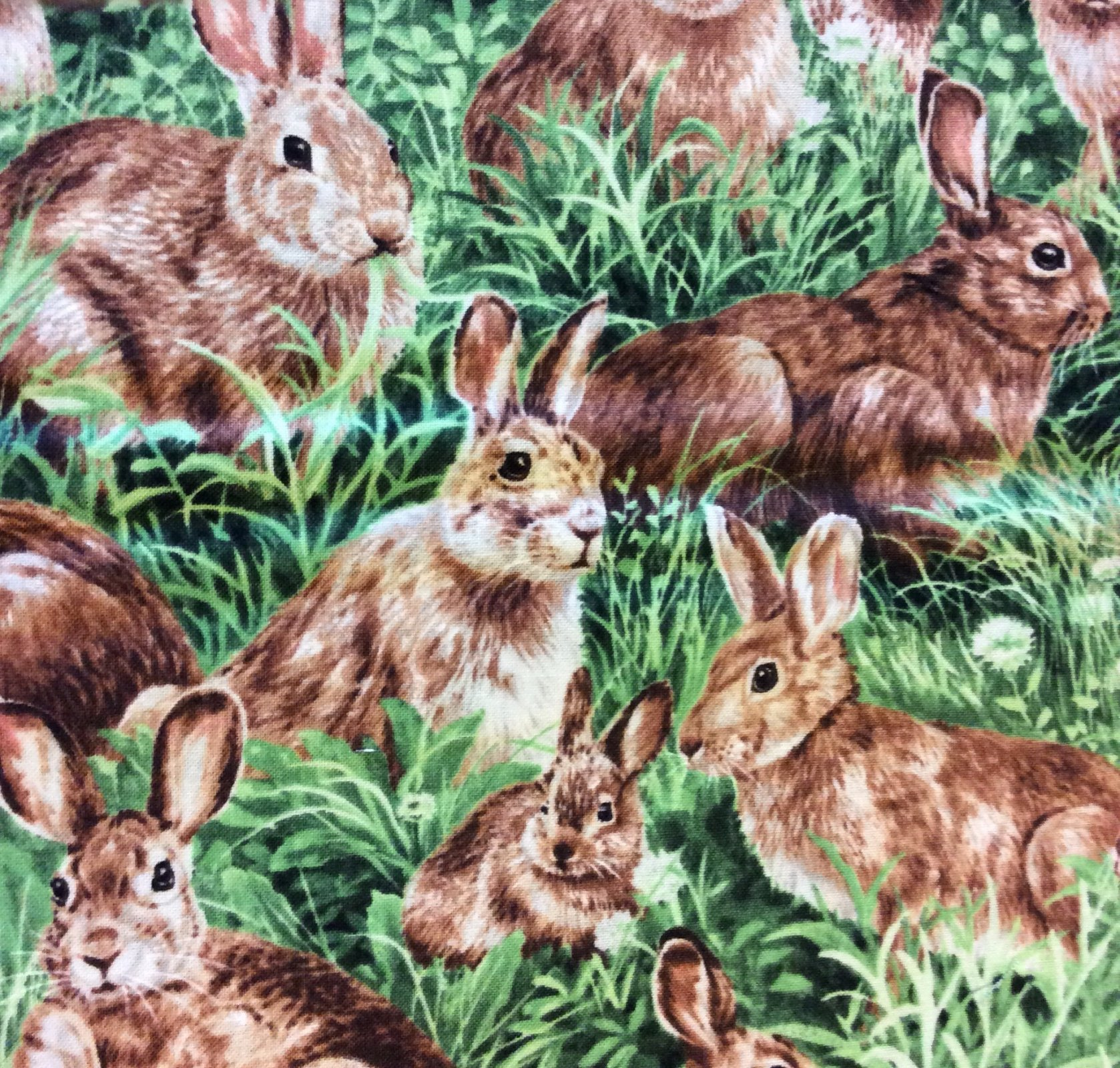 Bunny Rabbits in Green Grass Meadow Cotton Quilt Fabric FT87