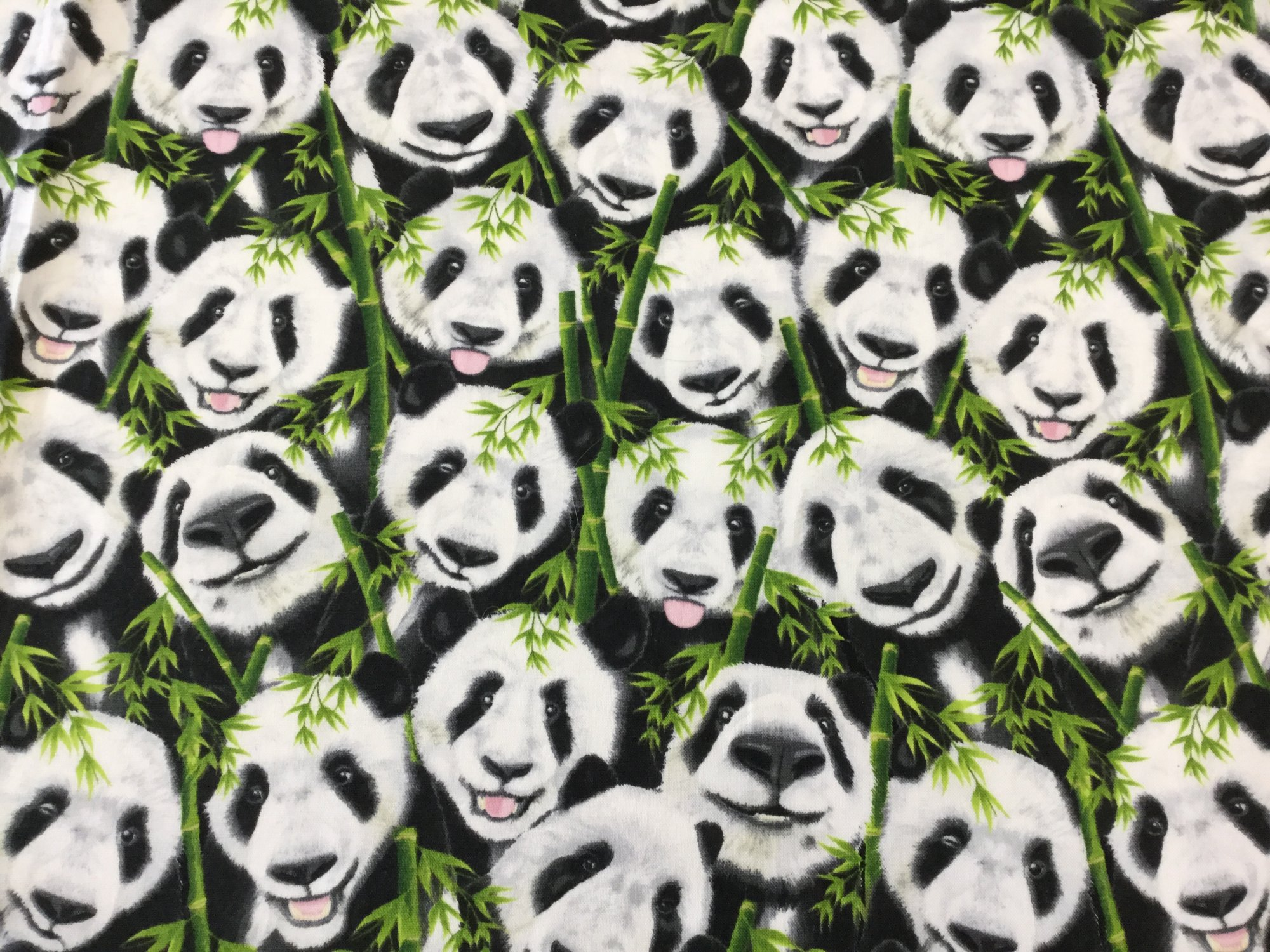 Panda Bear Selfie Cute Panda Faces Bamboo Shoots Cotton Quilt Fabric TT97