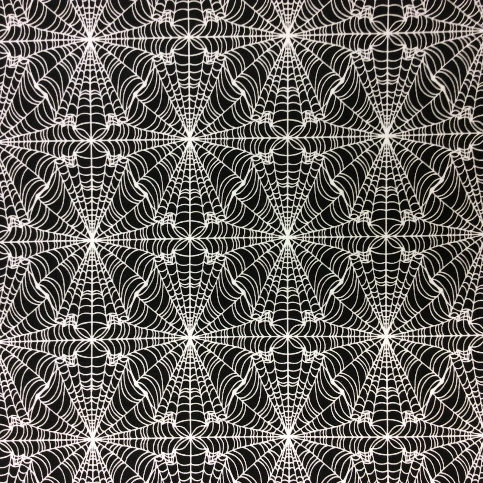 Spiderweb Halloween Spooky Gross Scary Cotton Spider  Quilt Fabric RB66