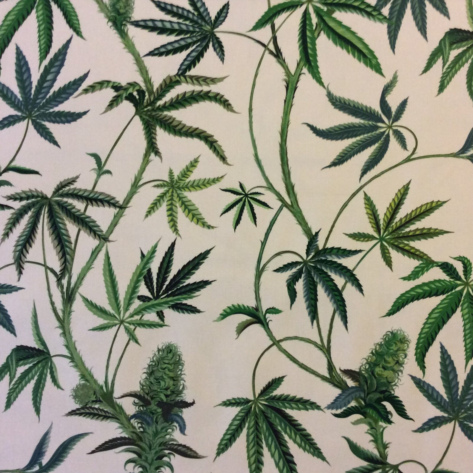 HAH178 lighter colorway  Marijuana CANVAS  Pot Cannabis Wish Cotton Fabric HAH178