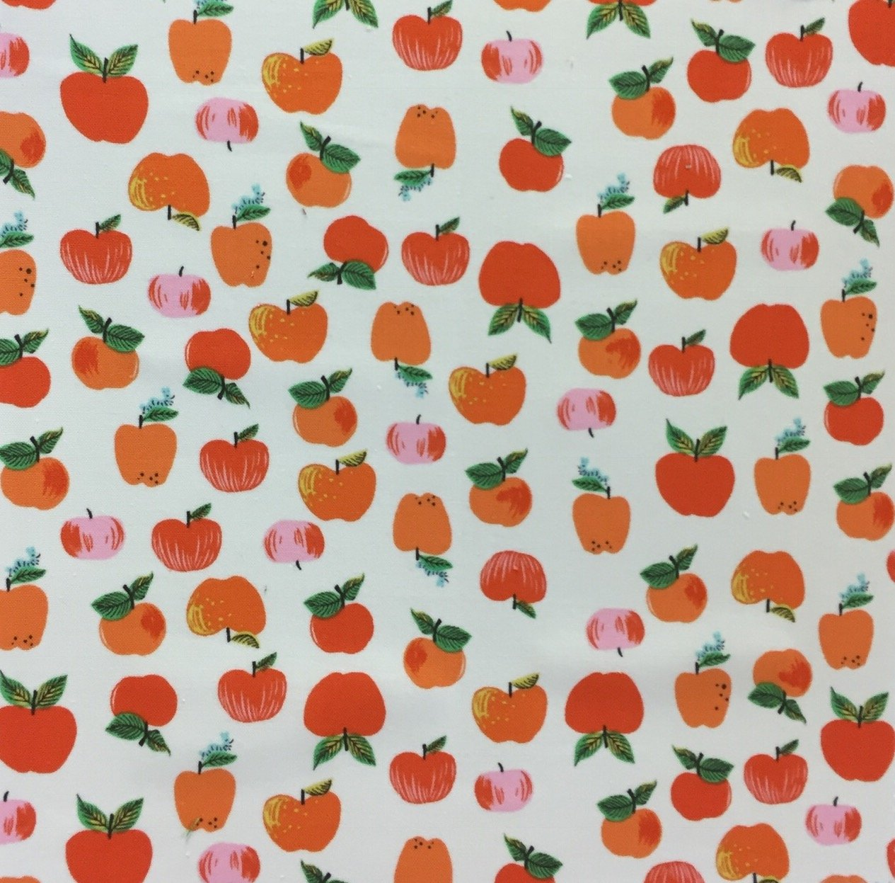 Heather Ross Kinder Retro Apples Fruit  School Teacher Cotton Quilt Fabric WI122