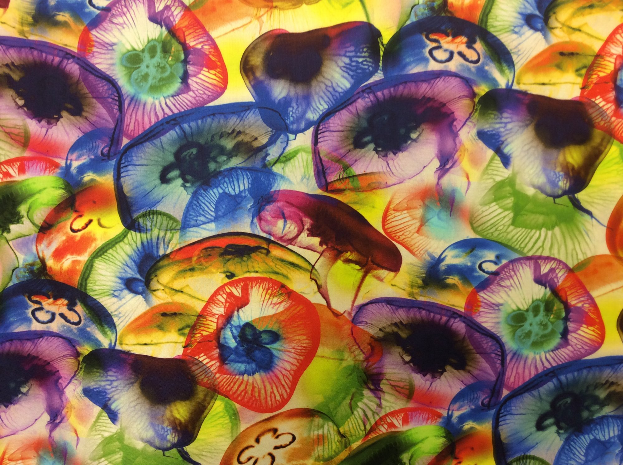 Jellyfish Amazing Spectrum Digital Color Print Cotton Quilt Fabric NT45