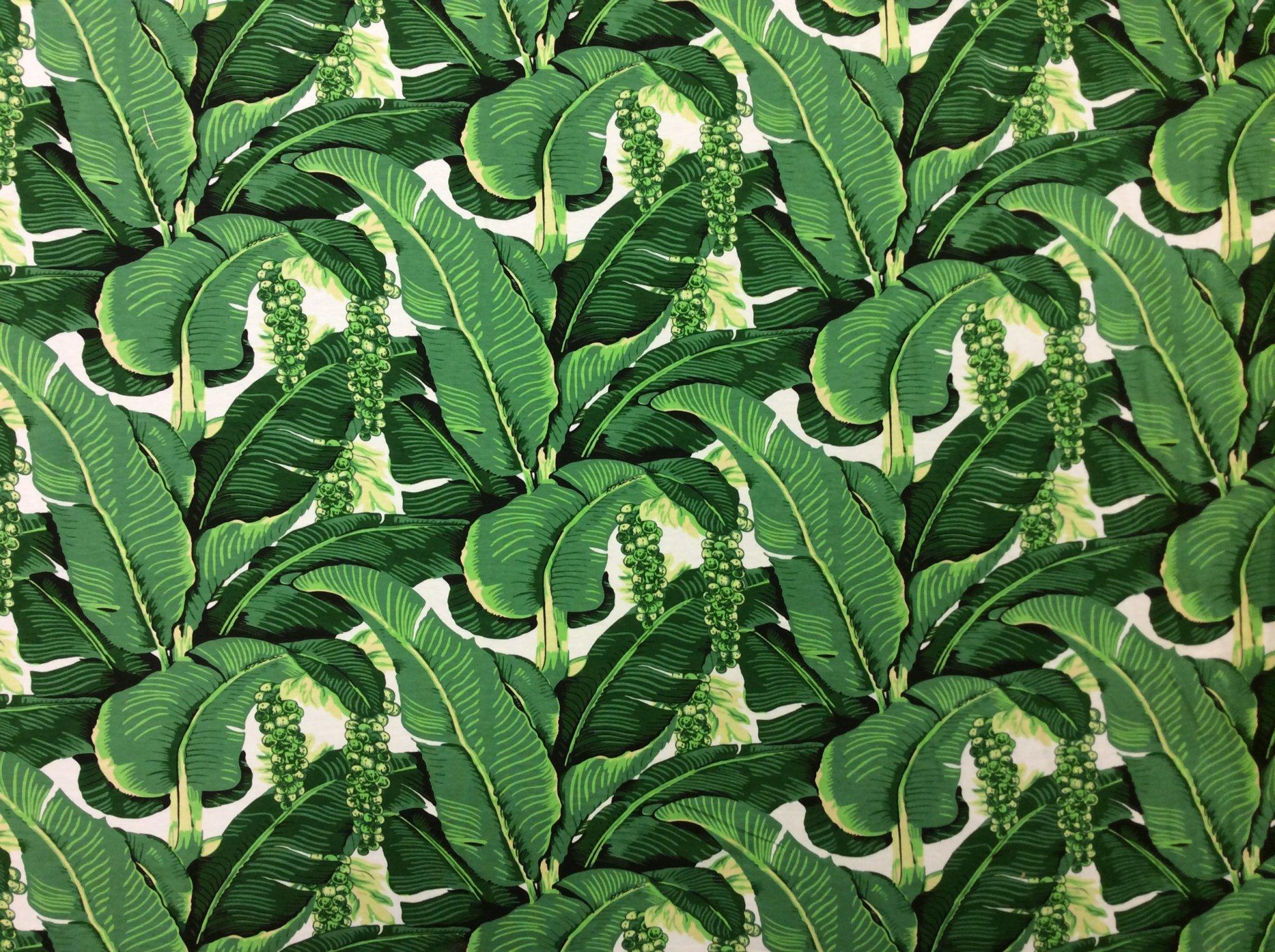 Palm Leaf Tropical Mod Style Bedhead Cotton Lycra Knit Apparel Fabric RMRC5958