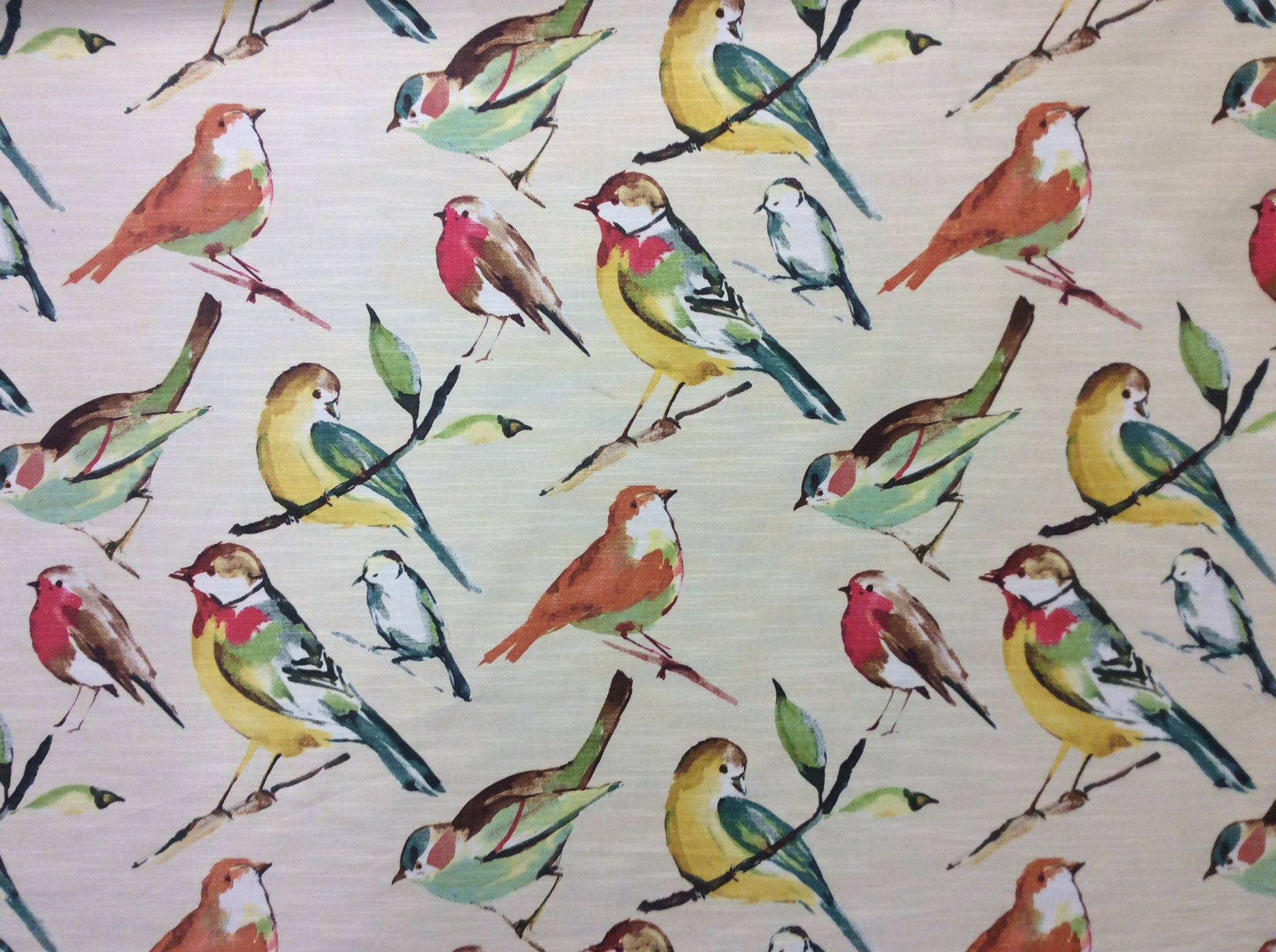 Richloom Birdwatcher Meadow Pastel Graphic Watercolor Birds cotton Home Decor Fabric OR139