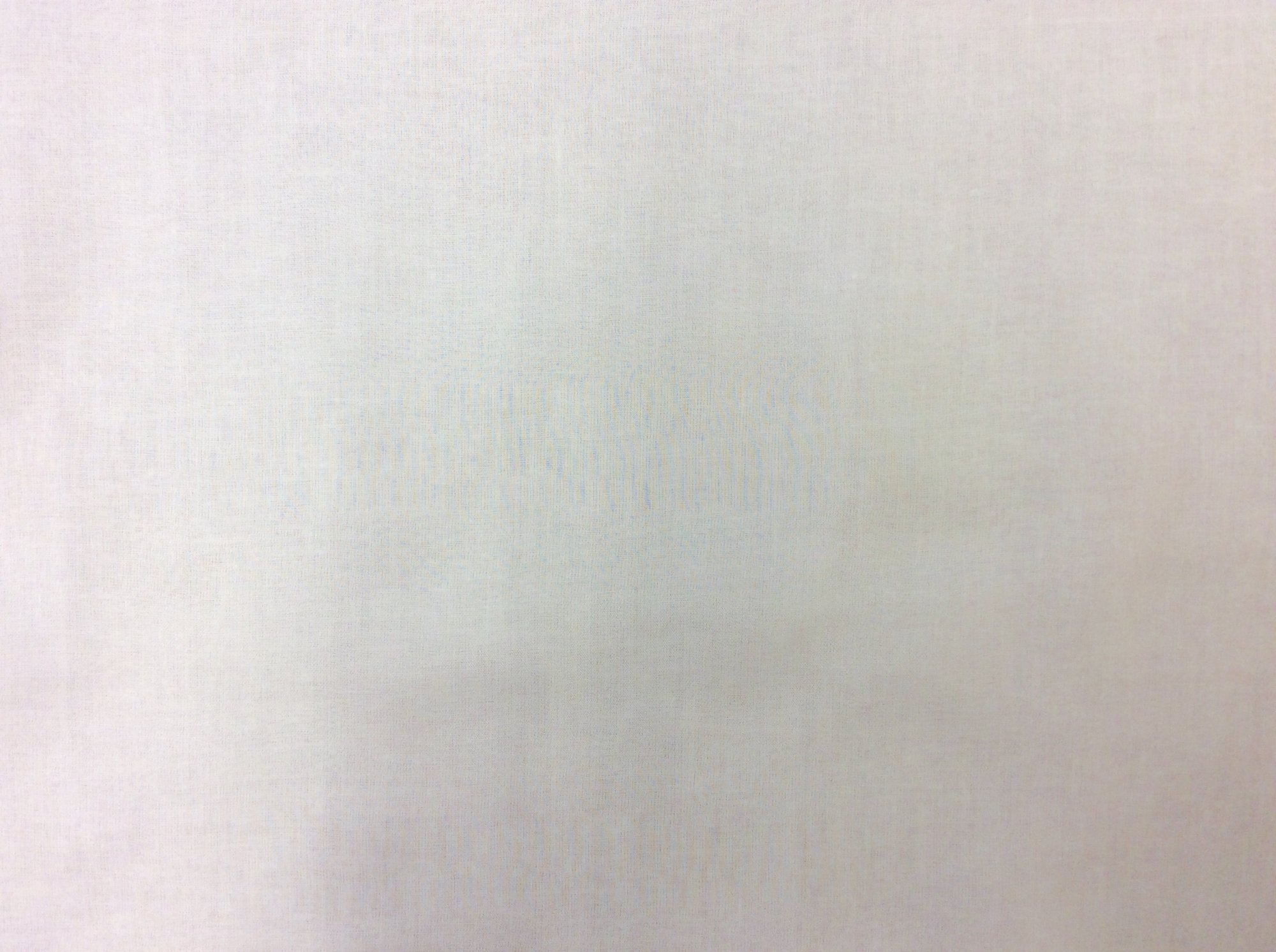 White Sheer Silk Apparel Fabric RR7699