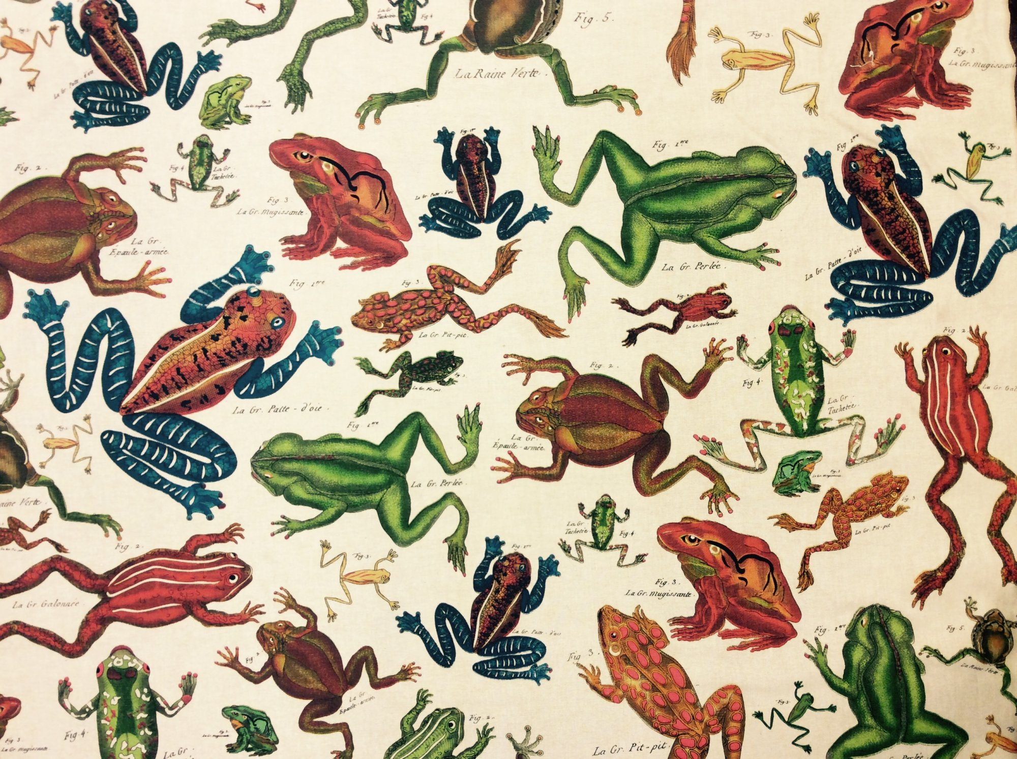 Kelly O' Neal Design Legacy Hand Blocked Illustrated Frogs Drapery Fabric Linen Fabric Upholstery Drapery Fabric DLSO101
