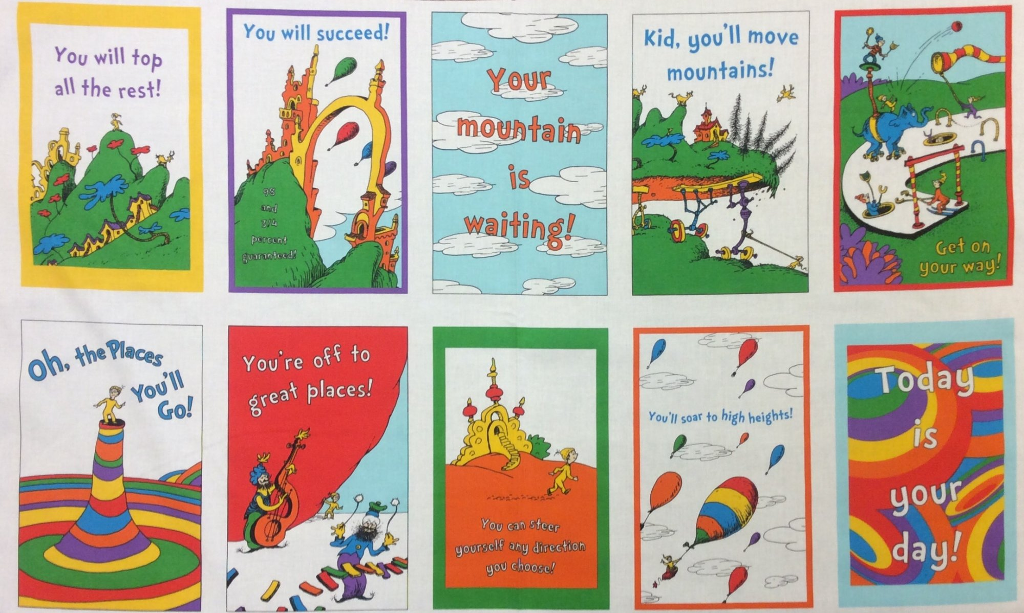 Dr Seuss Oh, the Places You'll Go Panel Quilt Fabric Cotton Fabric RK202