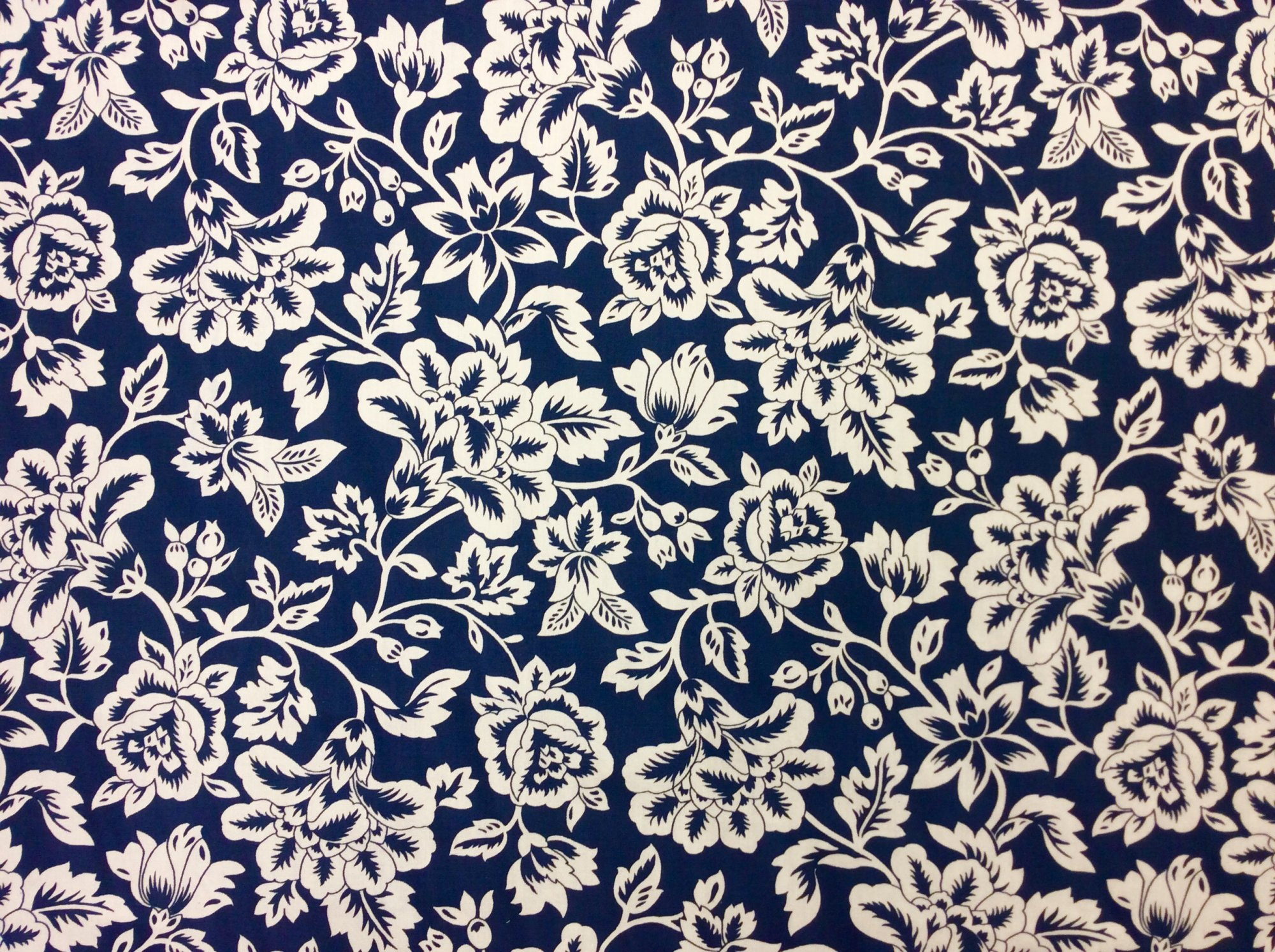 Floral Navy Modern Retro Flower Sun Navy  White Outdoor Fabric OS574