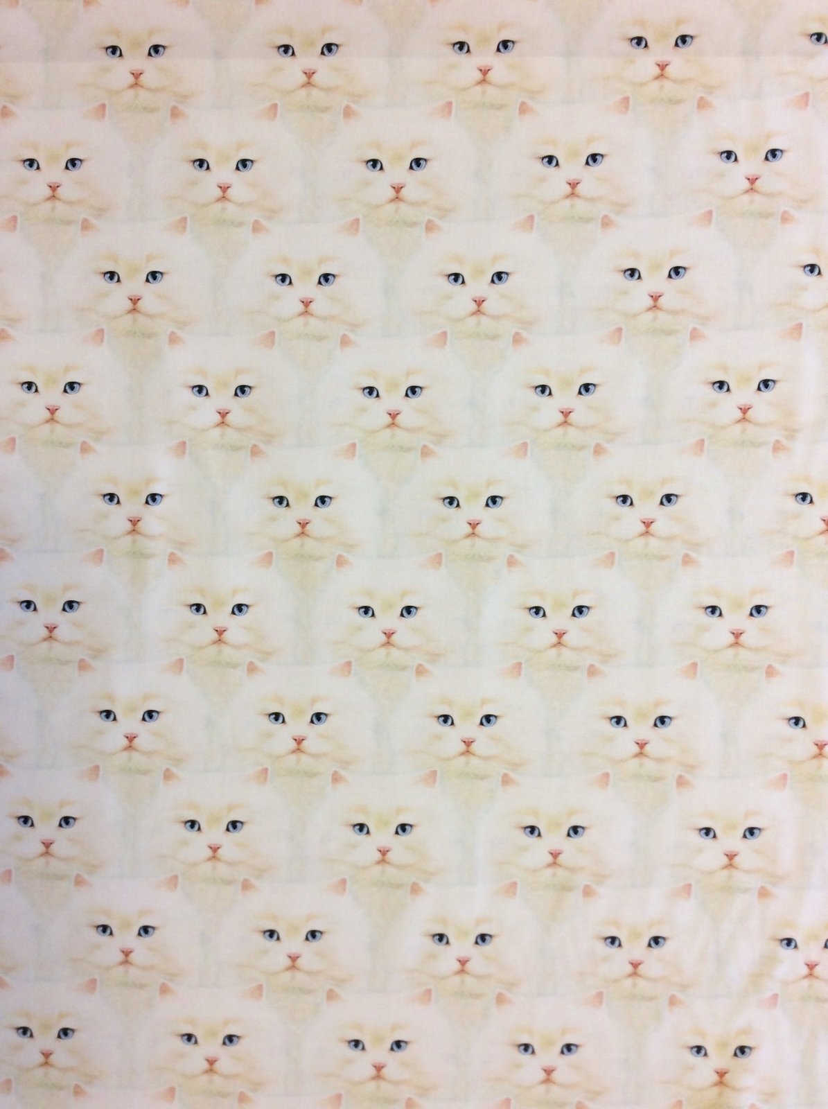 Cat Faces Meow White Kitty All Over Print Cotton Quilting Fabric RK224