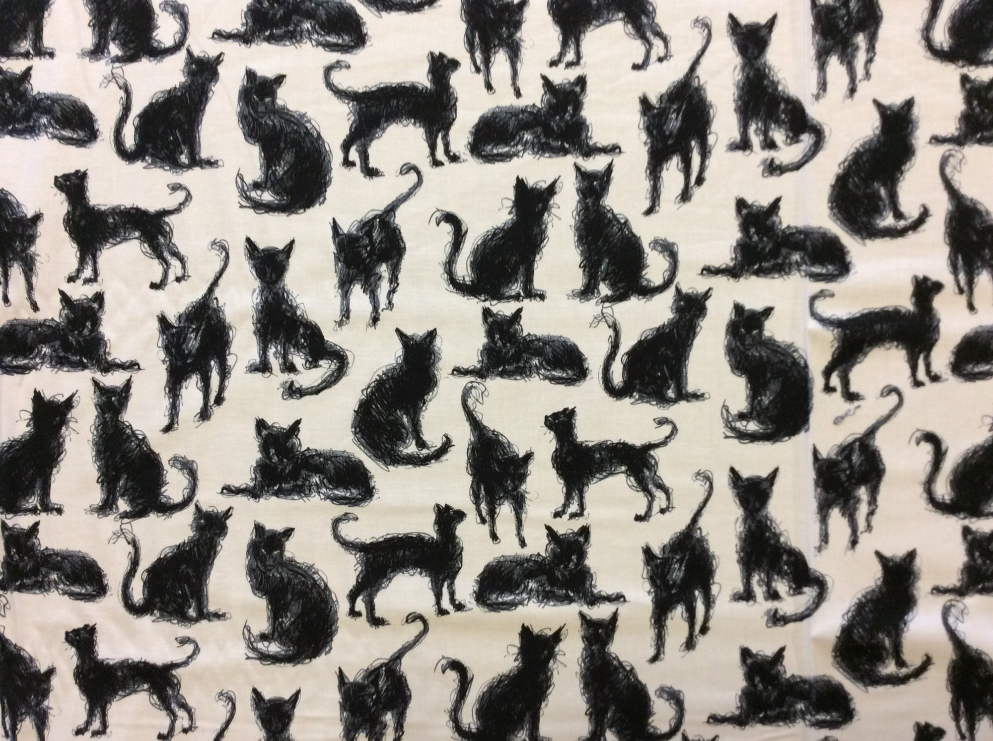 Scribble Black Cat Halloween Kitty Black and White Cotton Quilt Fabric NT85