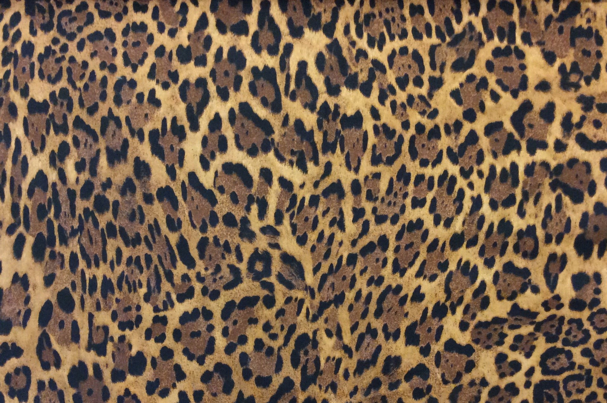 Wild Thing Cheetah Jungle Cat Fur Print Kitschy Spotted Cotton Quilt Fabric FT192