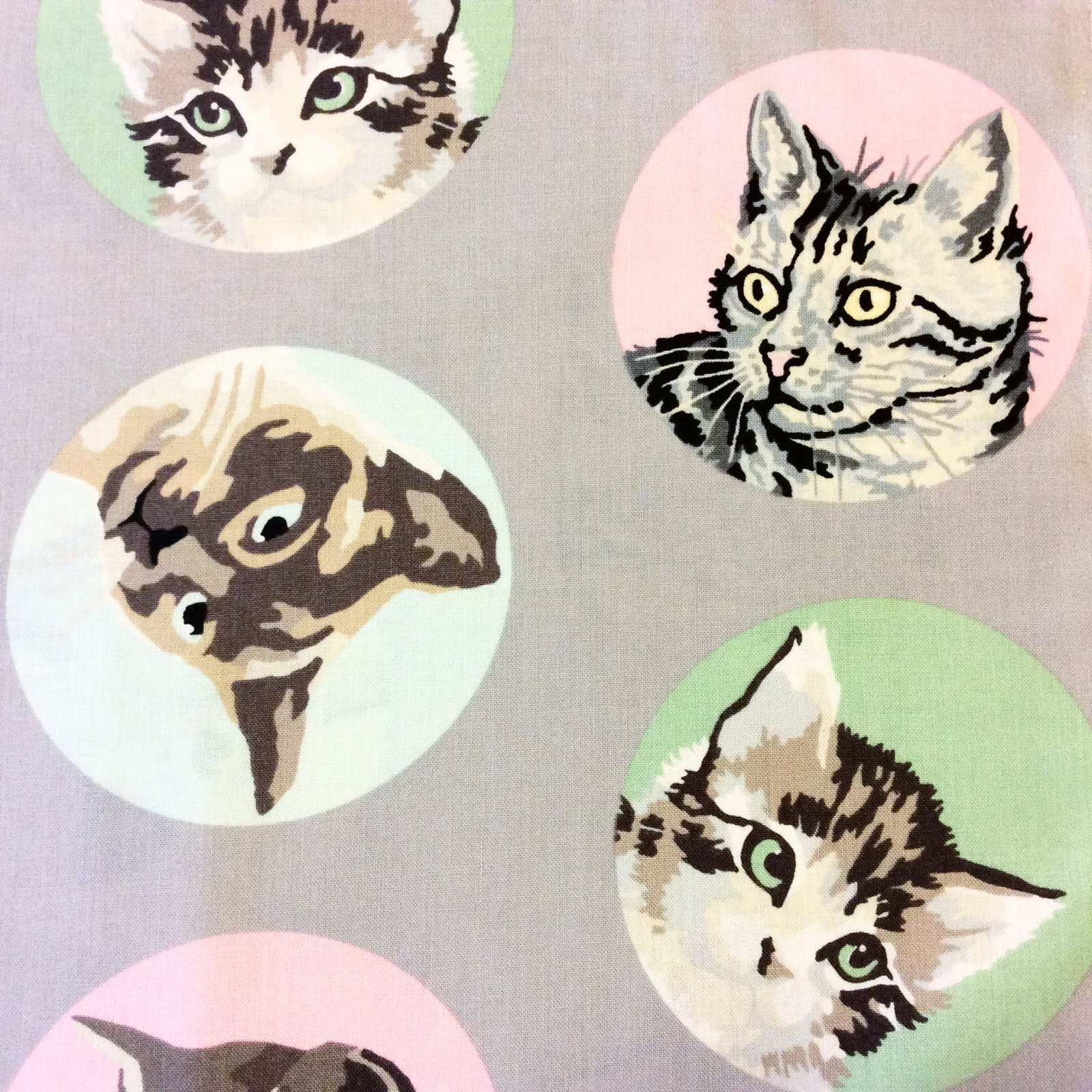 FAT QUARTER! Paint by Number MODA Cat Dot Kitty Kitten Kitties Pet Spot Cute Animal Cotton Quilt Fabric RPFMO101