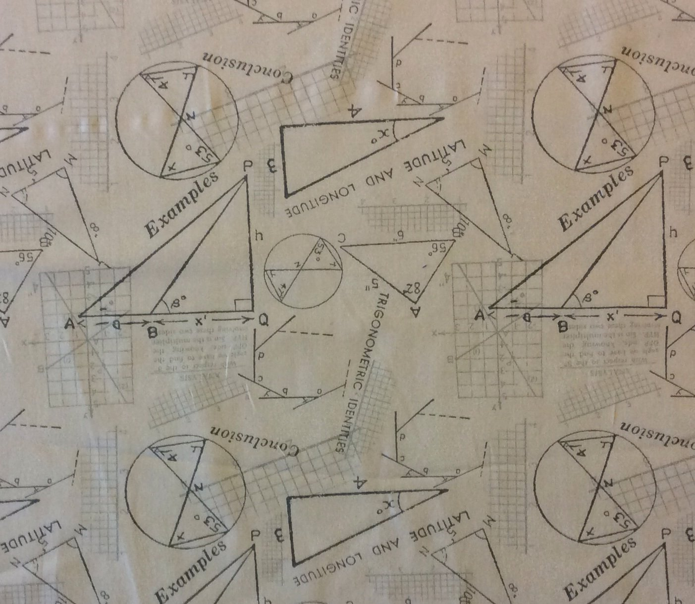 MO34 Math Geometry Calculus Trig Triangles Latitude Quilting Cotton Fabric