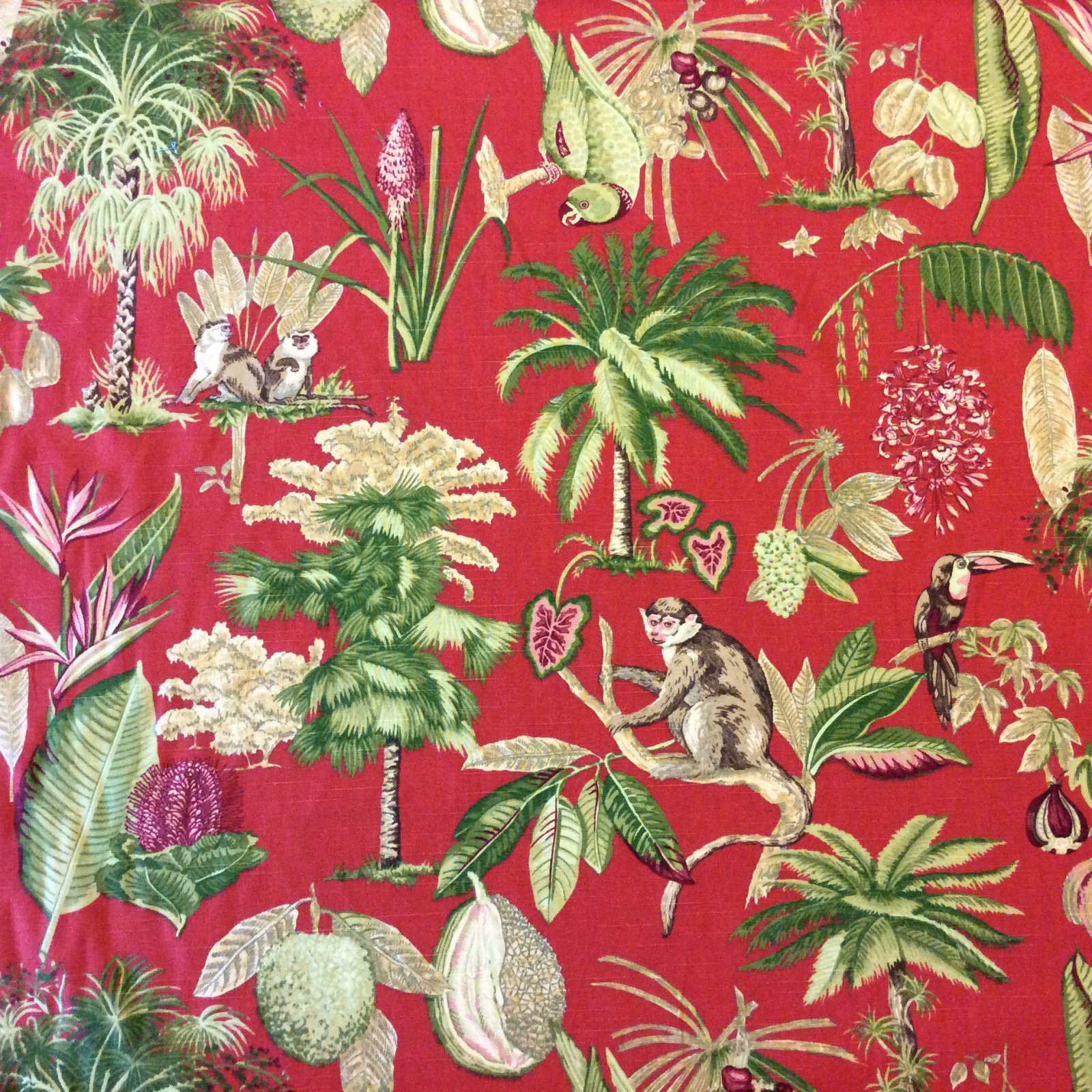 NL237 Red Tropical Jungle Monkey Parrot Flower Fruit Drapery Home Decor  Fabric