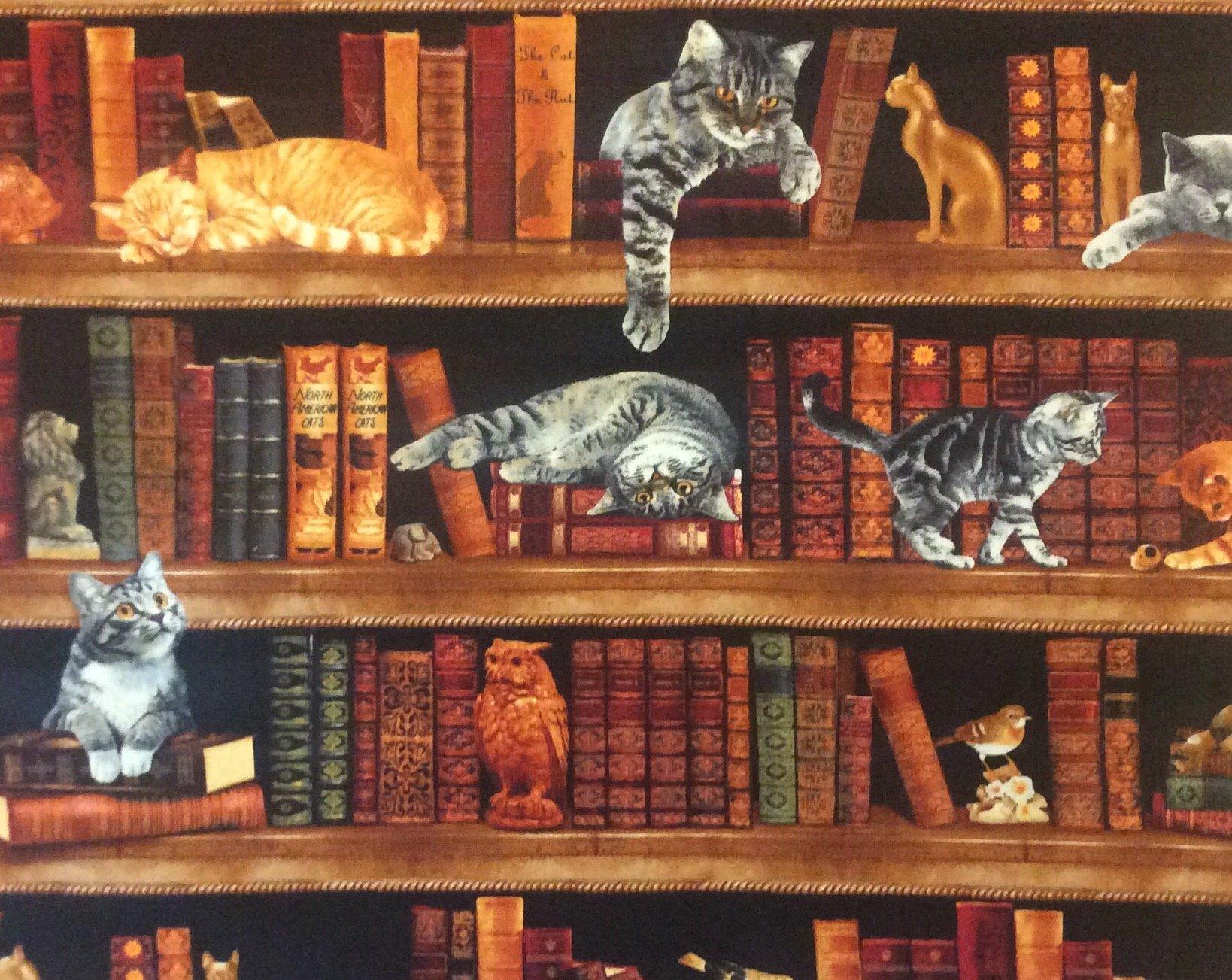 NT09 Library Kitty Cat Books Literature Kitten Cotton Quilt Fabric