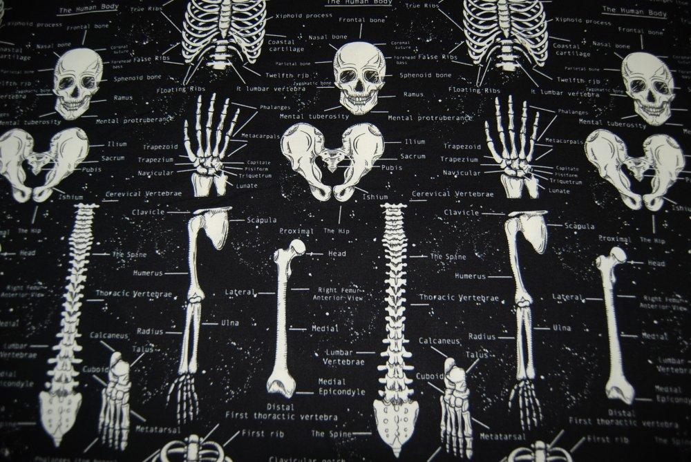 Skeleton Skull Bones Anatomy Illustrations GLOW IN THE DARK Cotton Quilting Fabric CR165