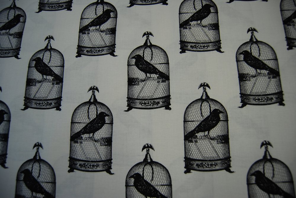 Edgar Allen Poe Nevermore Raven Claw Bird Black Crow Spooky Halloween Goth Birdcage White Background Cotton Quilting Fabric CR140