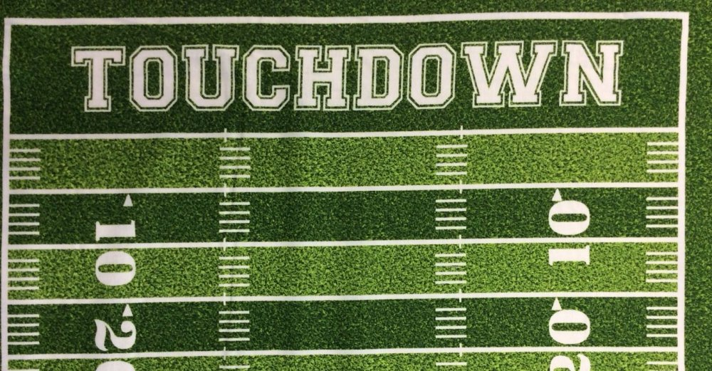 Football Field Grass Goals Sports Touchdown Panel Cotton Fabric Quilt Fabric PNL53