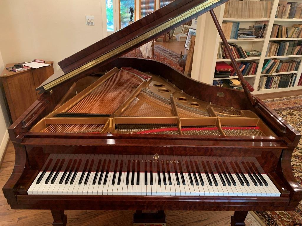 Steinway & Sons Crown Jewel Collection Model O