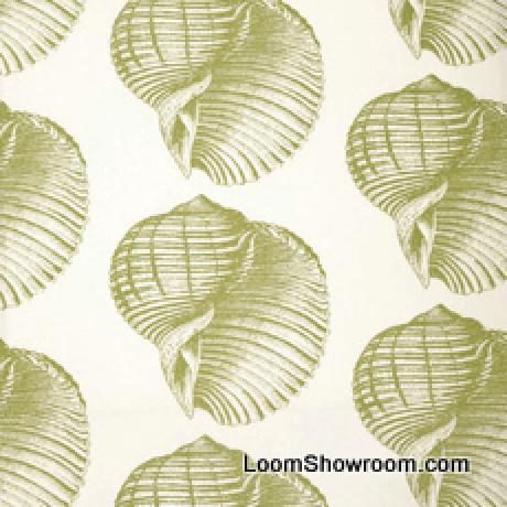 Thomas Paul Sealife Shell Beach Illustrated Life Print Heavy Weight Cotton Fabric Kiwi DSO105NR